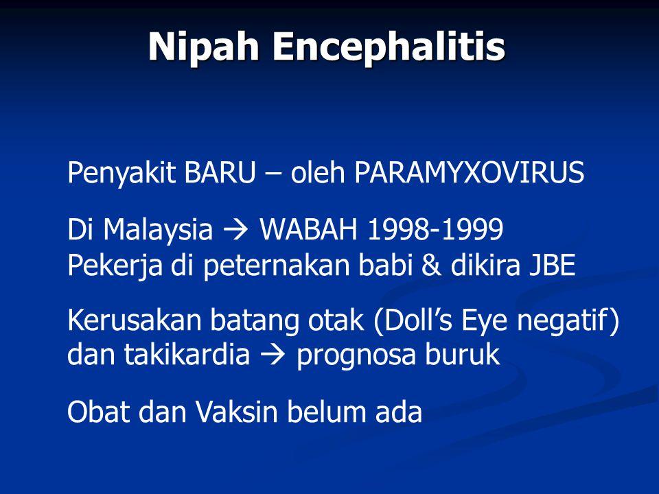 Nipah Encephalitis Penyakit BARU – oleh PARAMYXOVIRUS Di Malaysia  WABAH 1998-1999 Pekerja di peternakan babi & dikira JBE Kerusakan batang otak (Doll's Eye negatif) dan takikardia  prognosa buruk Obat dan Vaksin belum ada
