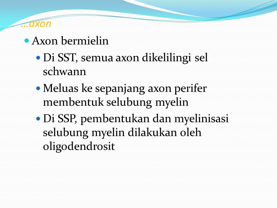 …axon Axon bermielin Di SST, semua axon dikelilingi sel schwann Meluas ke sepanjang axon perifer membentuk selubung myelin Di SSP, pembentukan dan mye