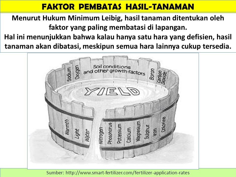 FAKTOR PEMBATAS HASIL-TANAMAN Sumber: http://www.smart-fertilizer.com/fertilizer-application-rates Menurut Hukum Minimum Leibig, hasil tanaman ditentukan oleh faktor yang paling membatasi di lapangan.