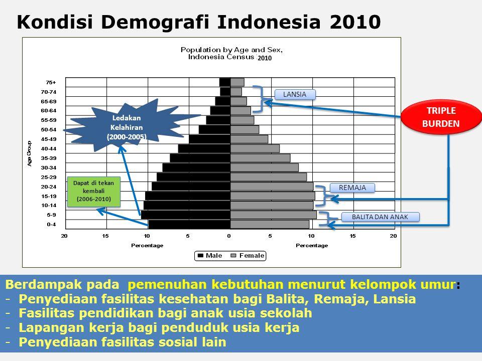 TRIPLE BURDEN 2010 LANSIA REMAJA BALITA DAN ANAK Dapat di tekan kembali (2006-2010) Dapat di tekan kembali (2006-2010) Ledakan Kelahiran (2000-2005) 4