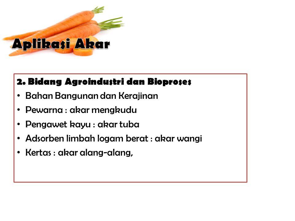2. Bidang Agroindustri dan Bioproses Bahan Bangunan dan Kerajinan Pewarna : akar mengkudu Pengawet kayu : akar tuba Adsorben limbah logam berat : akar