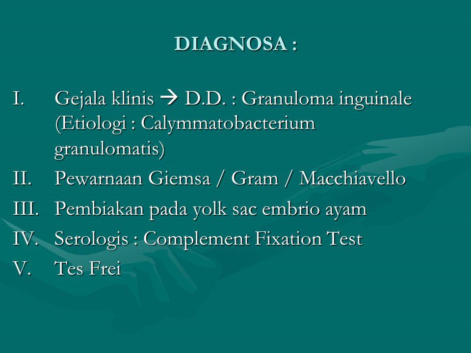 DIAGNOSA : I.Gejala klinis  D.D. : Granuloma inguinale (Etiologi : Calymmatobacterium granulomatis) II. Pewarnaan Giemsa / Gram / Macchiavello III. P