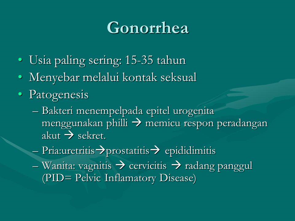 Gonorrhea Usia paling sering: 15-35 tahunUsia paling sering: 15-35 tahun Menyebar melalui kontak seksualMenyebar melalui kontak seksual PatogenesisPat