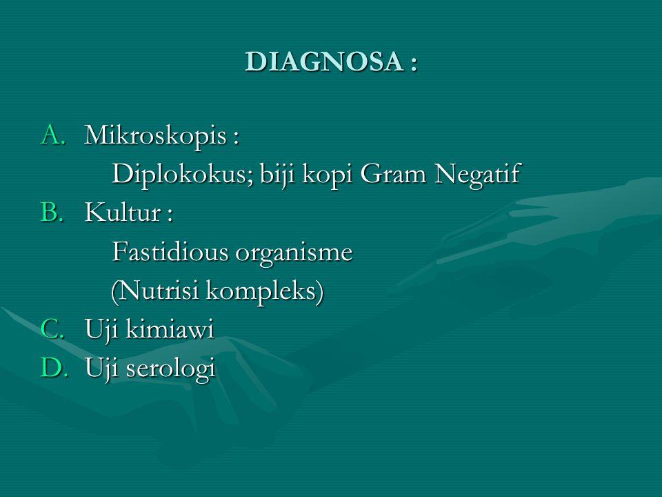 DIAGNOSA : A.Mikroskopis : Diplokokus; biji kopi Gram Negatif B.Kultur : Fastidious organisme (Nutrisi kompleks) (Nutrisi kompleks) C.Uji kimiawi D.Uj