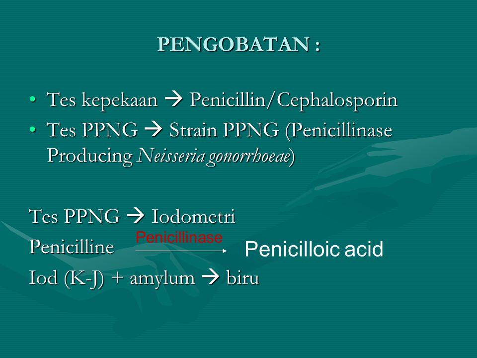 PENGOBATAN : Tes kepekaan  Penicillin/CephalosporinTes kepekaan  Penicillin/Cephalosporin Tes PPNG  Strain PPNG (Penicillinase Producing Neisseria