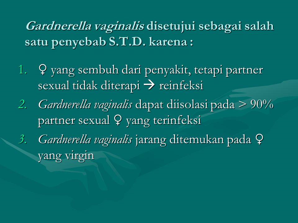 Gardnerella vaginalis disetujui sebagai salah satu penyebab S.T.D. karena : 1. ♀ yang sembuh dari penyakit, tetapi partner sexual tidak diterapi  rei