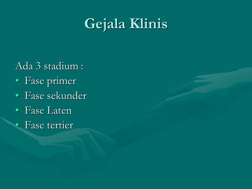 Gejala Klinis Ada 3 stadium : Fase primerFase primer Fase sekunderFase sekunder Fase LatenFase Laten Fase tertierFase tertier