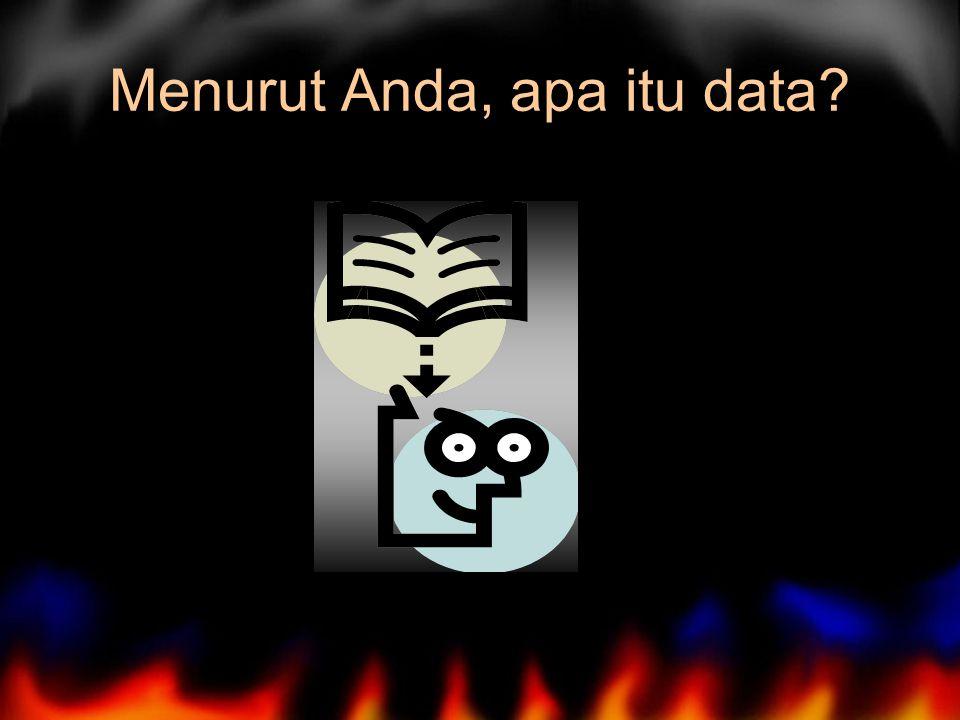 Menurut Anda, apa itu data