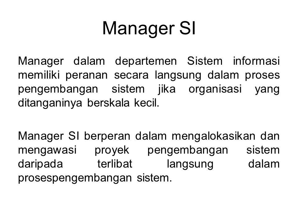 Ada beberapa manager SI pada departemen SI yang berskala besar : -Manager untuk keseluruhan departemen SI biasa disebut sebagai Chief Information Officer dan berada dibawah president atau direktur perusahaan.