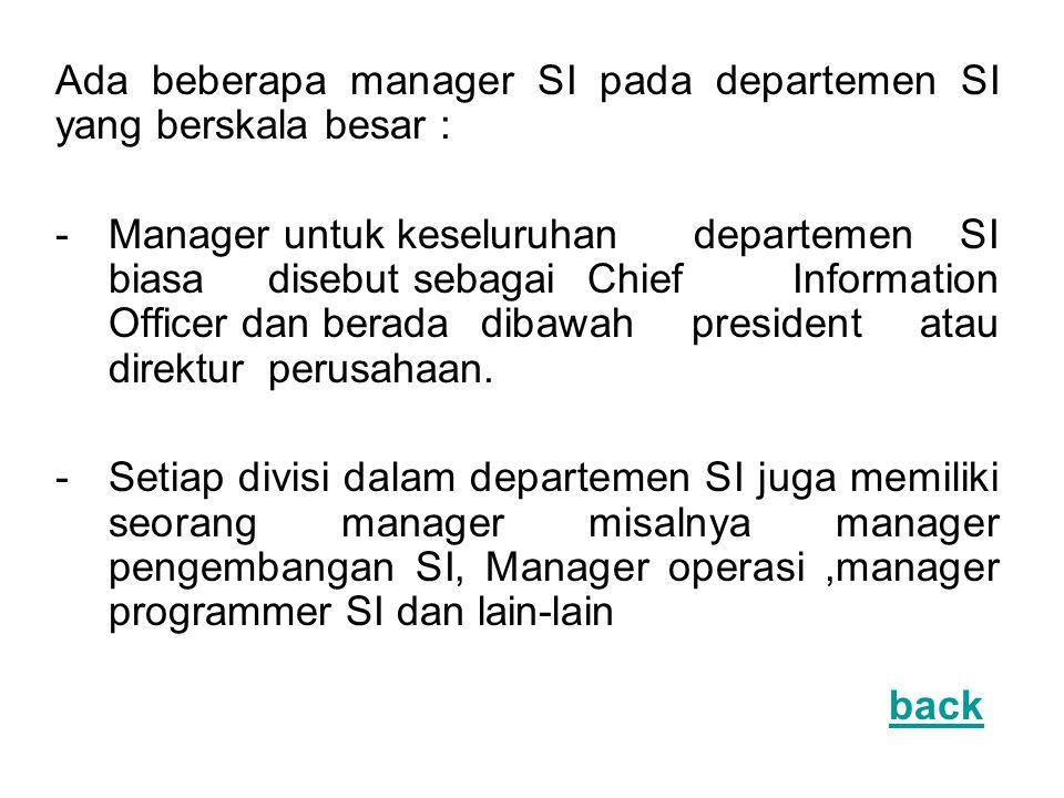 Ada beberapa manager SI pada departemen SI yang berskala besar : -Manager untuk keseluruhan departemen SI biasa disebut sebagai Chief Information Offi