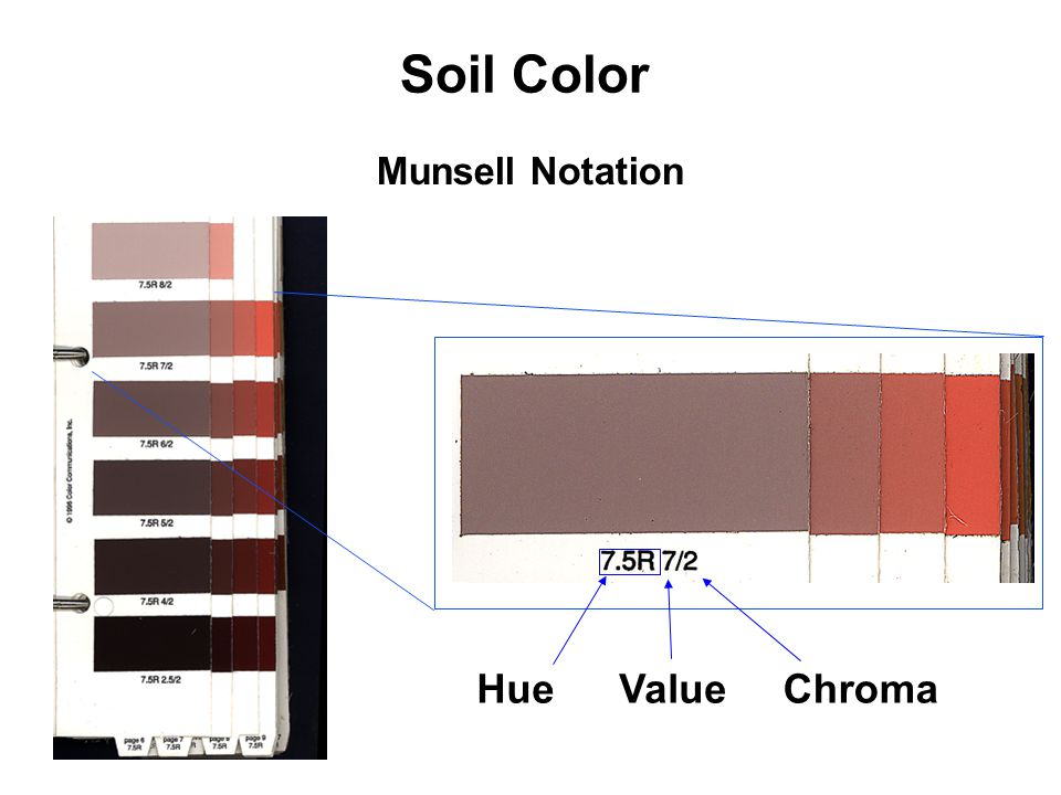 Munsell Notation Hue (position on the color wheel) Value (amount of black or white added to the color Chroma (amount of brightness of saturation of the color