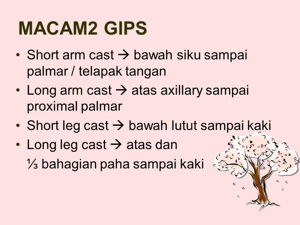 MACAM2 GIPS Short arm cast  bawah siku sampai palmar / telapak tangan Long arm cast  atas axillary sampai proximal palmar Short leg cast  bawah lutut sampai kaki Long leg cast  atas dan ⅓ bahagian paha sampai kaki