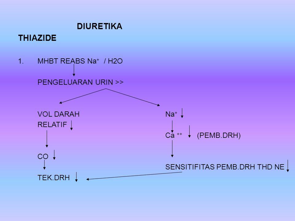DIURETIKA THIAZIDE 1.MHBT REABS Na + / H2O PENGELUARAN URIN >> VOL DARAHNa + RELATIF Ca ++ (PEMB.DRH) CO SENSITIFITAS PEMB.DRH THD NE TEK.DRH
