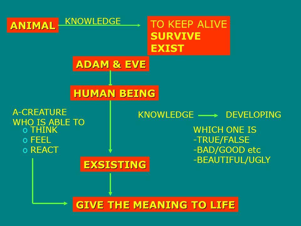 THINKING/REASONING  merupakan suatu cara untuk memperoleh suatau kebenaran, dimana kriteria dari suatu kebenaran adalah relatif Cara berpikir Rasional Tidak rasional LOGIS ANALITIK TDK LOGIS TDK ANALITIK