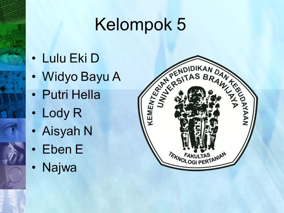 Lulu Eki D Widyo Bayu A Putri Hella Lody R Aisyah N Eben E Najwa Kelompok 5