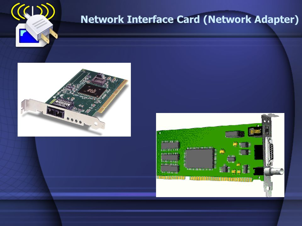 Network Interface Card (Network Adapter)
