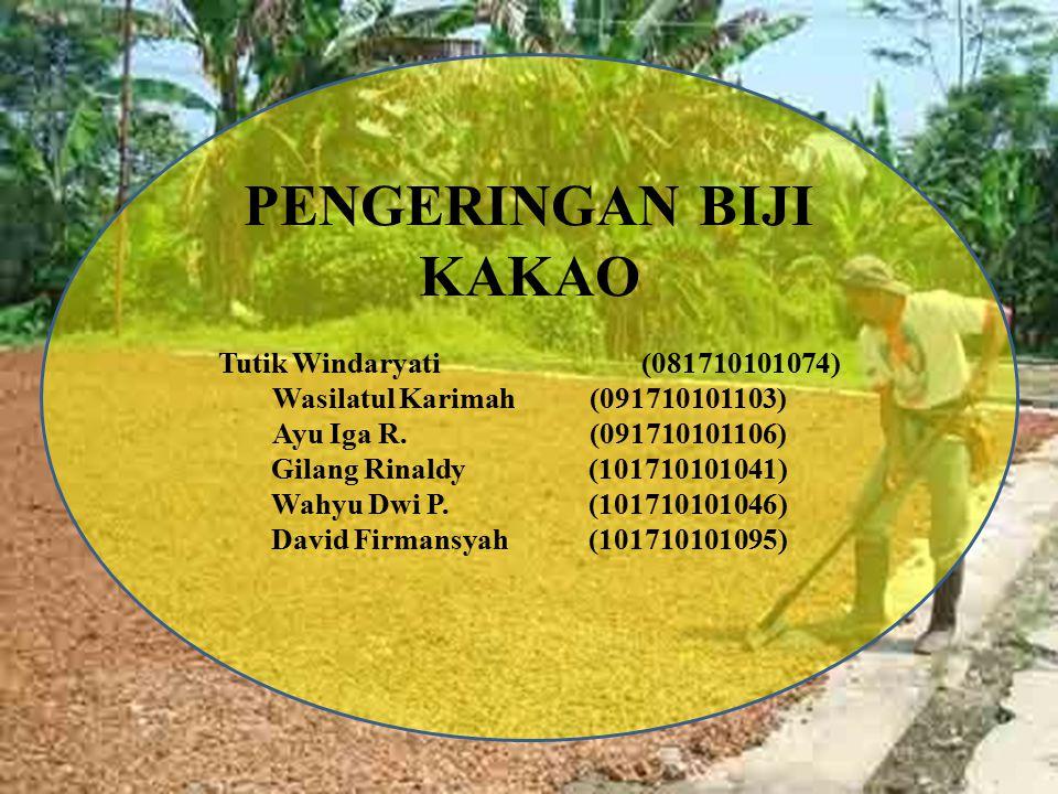 PENGERINGAN BIJI KAKAO Tutik Windaryati (081710101074) Wasilatul Karimah(091710101103) Ayu Iga R. (091710101106) Gilang Rinaldy (101710101041) Wahyu D
