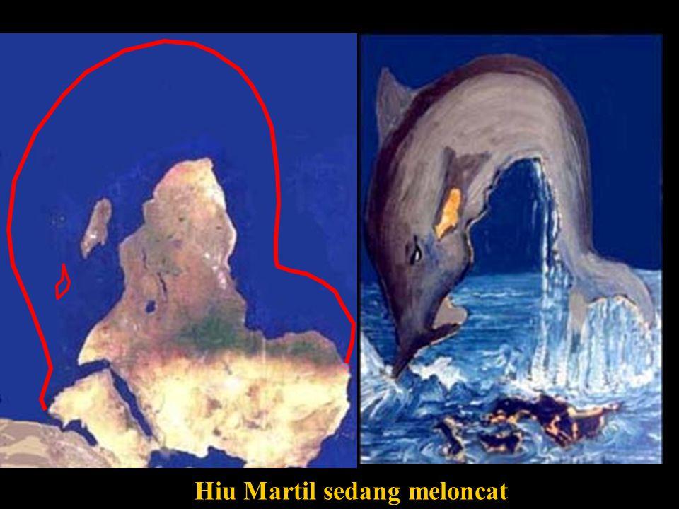 Hiu Martil sedang meloncat