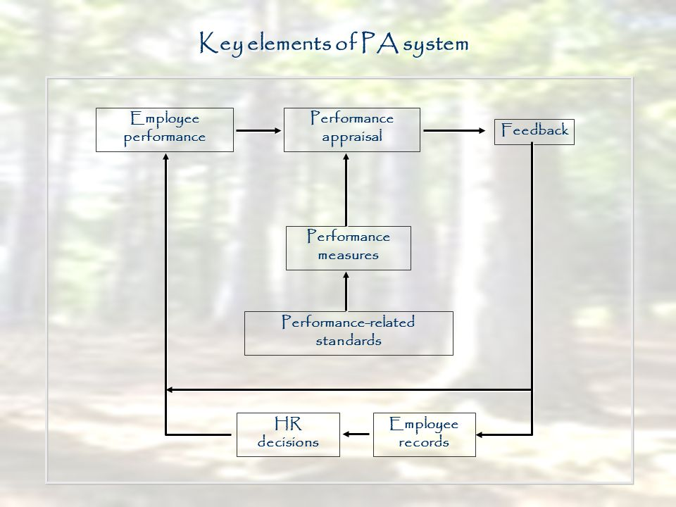 Performance appraisal Key elements of PA system Employee performance Performance measures Performance-related standards Feedback Employee records HR d