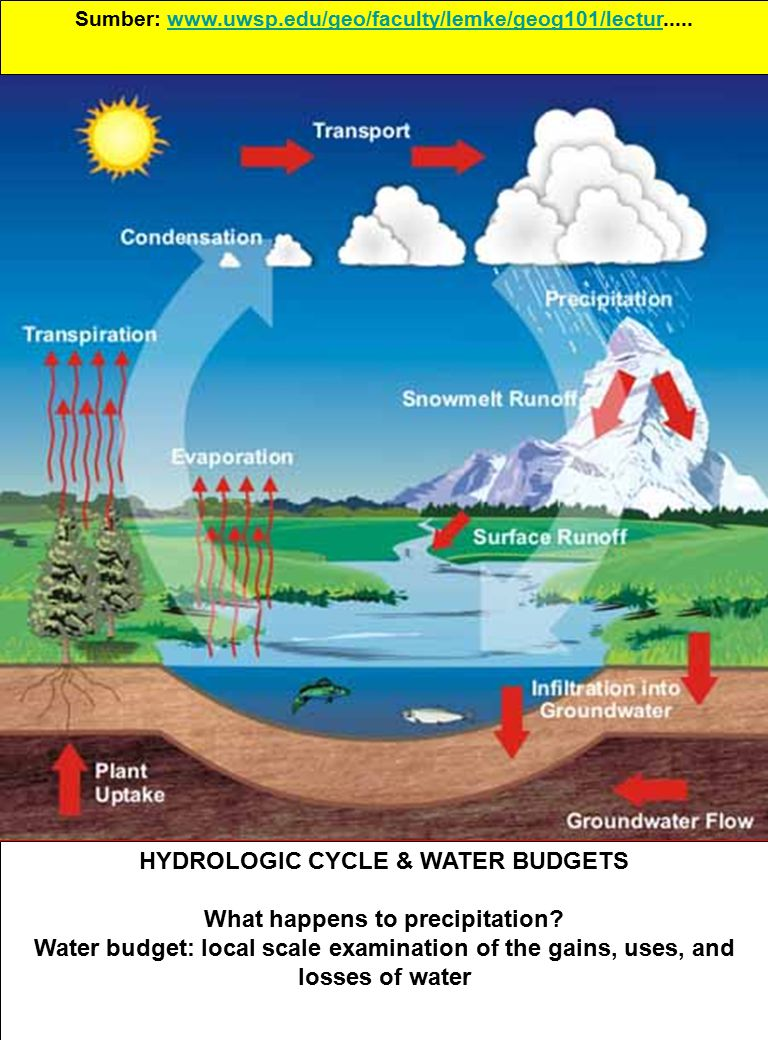 HYDROLOGIC CYCLE & WATER BUDGETS What happens to precipitation.