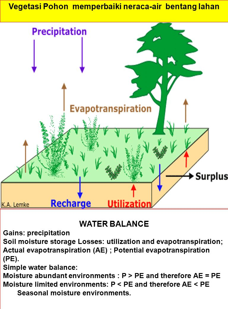 WATER BALANCE Gains: precipitation Soil moisture storage Losses: utilization and evapotranspiration; Actual evapotranspiration (AE) ; Potential evapot