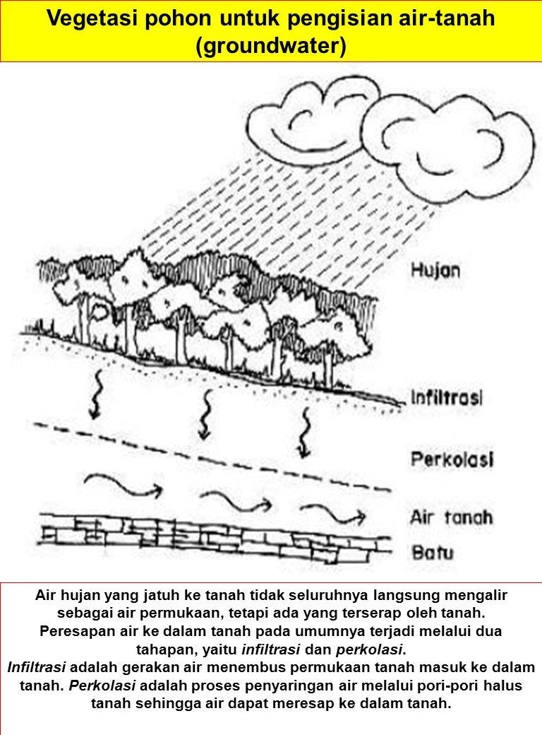 Air hujan yang jatuh ke tanah tidak seluruhnya langsung mengalir sebagai air permukaan, tetapi ada yang terserap oleh tanah.