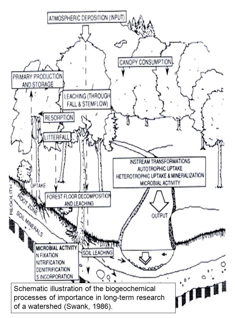 Kuantitas air yang mampu diserap tanah sangat tergantung beberapa faktor, yaitu: jumlah air hujan, kondisi fisik tanah seperti bobot isi, infiltrasi, porositas dan struktur tanah, jumlah tumbuh-tumbuhan serta lapisan yang tidak dapat ditembus oleh air.