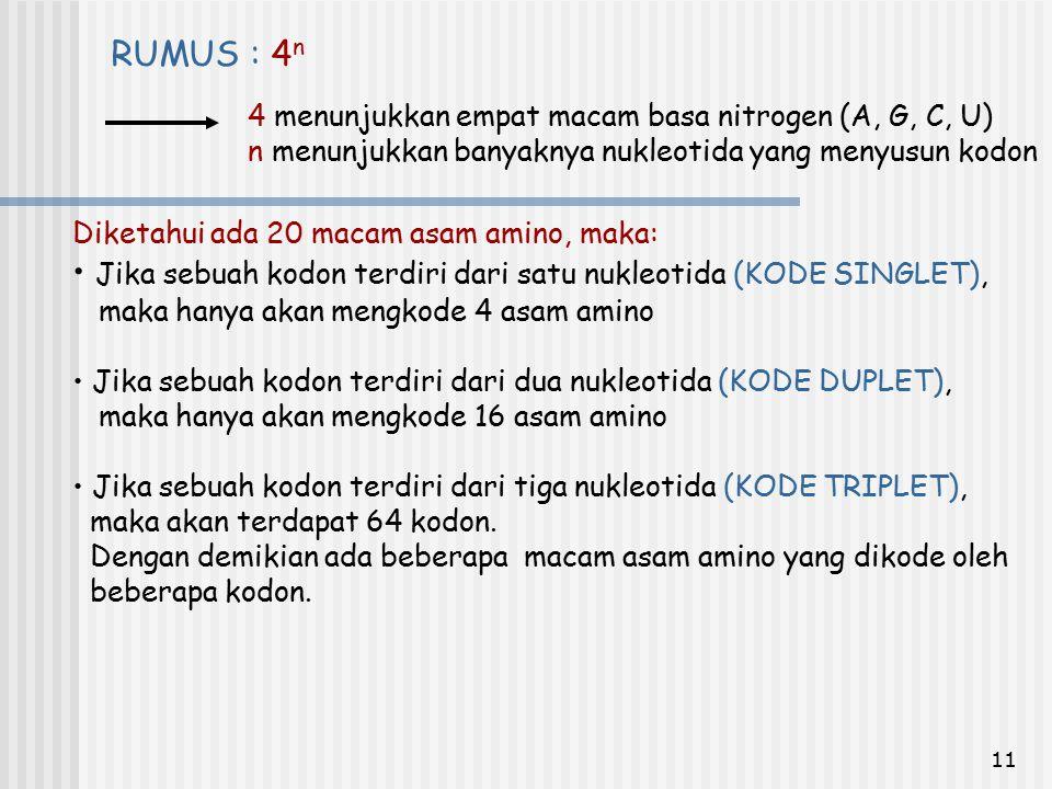 11 4 menunjukkan empat macam basa nitrogen (A, G, C, U) n menunjukkan banyaknya nukleotida yang menyusun kodon RUMUS : 4 n Diketahui ada 20 macam asam