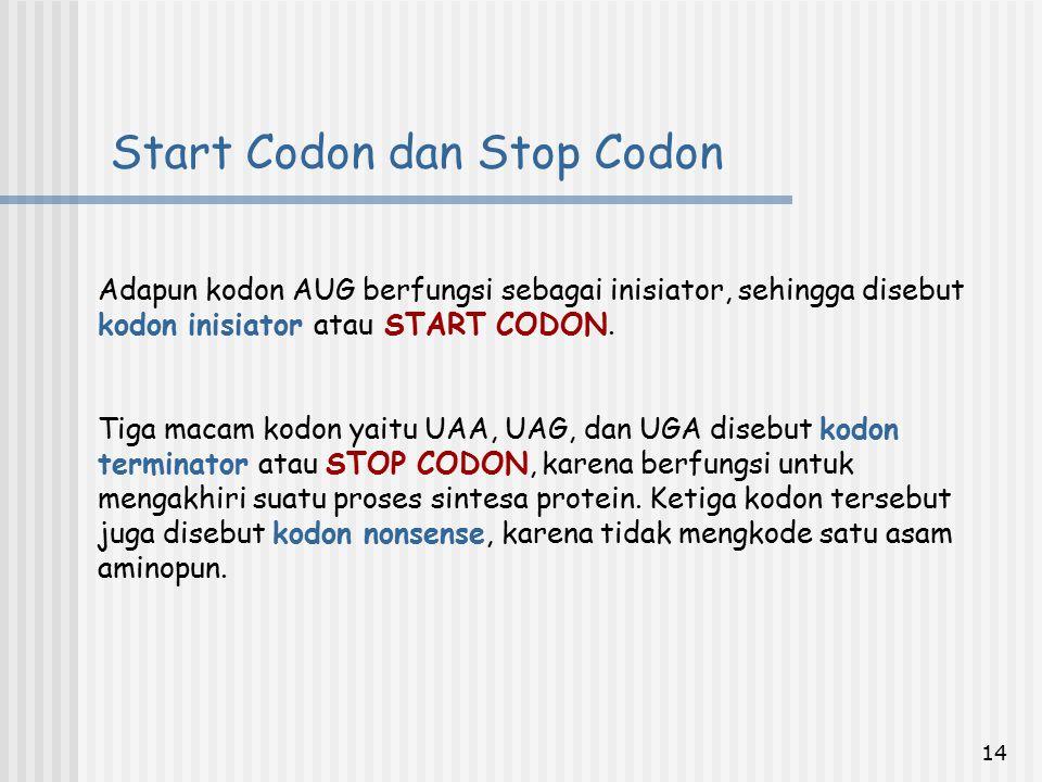 14 Start Codon dan Stop Codon Adapun kodon AUG berfungsi sebagai inisiator, sehingga disebut kodon inisiator atau START CODON. Tiga macam kodon yaitu
