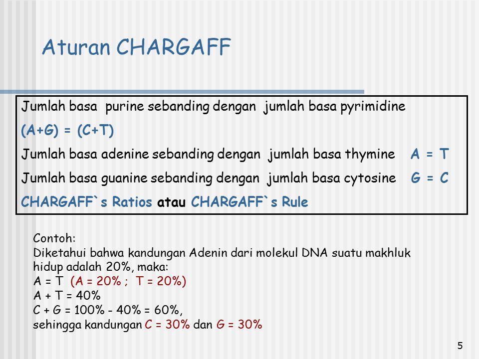 5 Jumlah basa purine sebanding dengan jumlah basa pyrimidine (A+G) = (C+T) Jumlah basa adenine sebanding dengan jumlah basa thymine A = T Jumlah basa