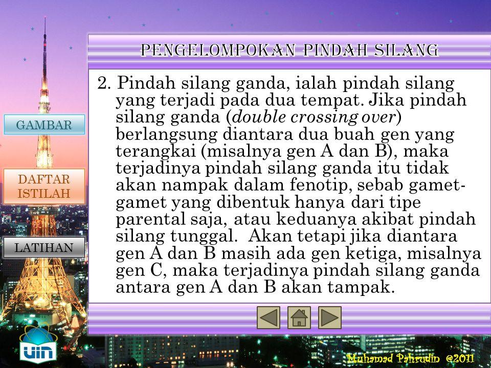 Muhamad Pahrudin @2011 Pindah silang dikelompokan atas 2, yaitu : 1. Pindah silang tunggal, ialah pindah silang yang terjadi pada satu tempat. Pindah