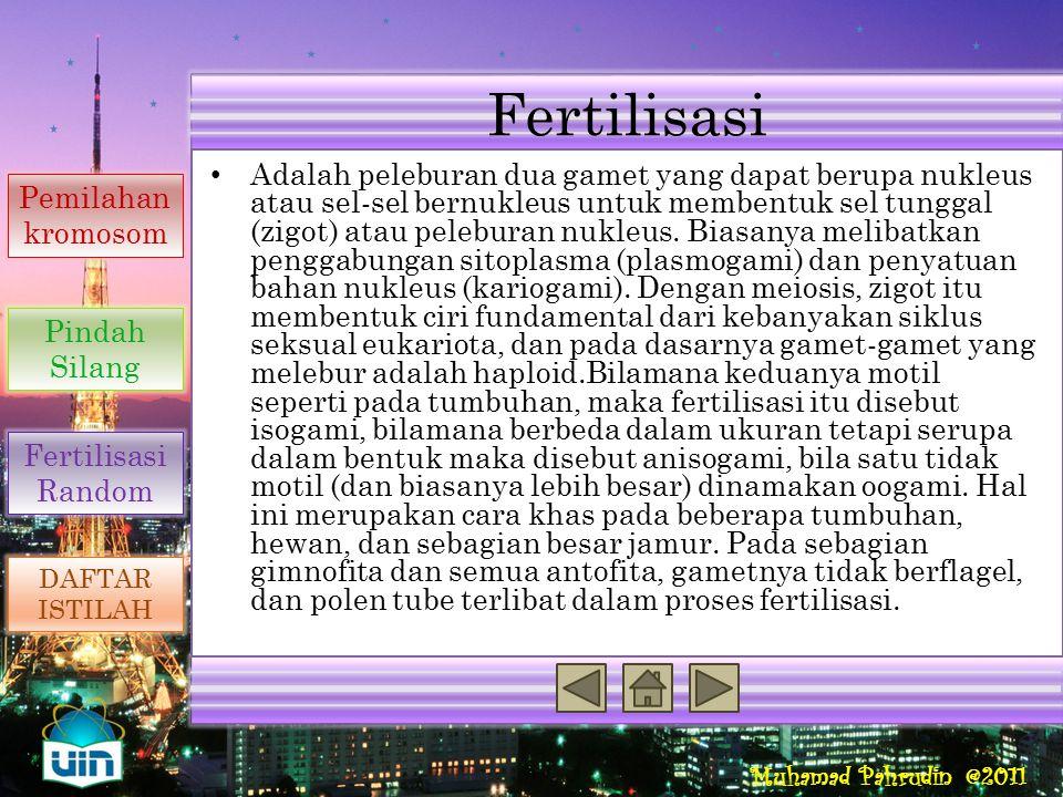 Muhamad Pahrudin @2011 Meiosis Adalah salah satu cara sel untuk mengalami pembelahan. Ciri pembelahan secara meiosis adalah: – Terjadi di sel kelamin