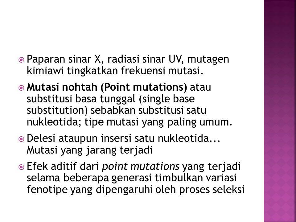  Paparan sinar X, radiasi sinar UV, mutagen kimiawi tingkatkan frekuensi mutasi.  Mutasi nohtah (Point mutations) atau substitusi basa tunggal (sing
