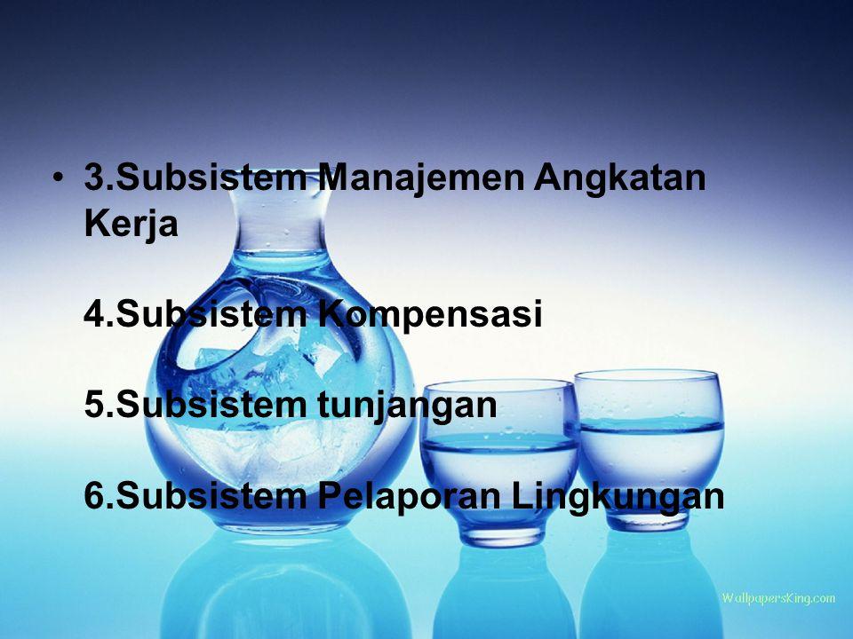 3.Subsistem Manajemen Angkatan Kerja 4.Subsistem Kompensasi 5.Subsistem tunjangan 6.Subsistem Pelaporan Lingkungan