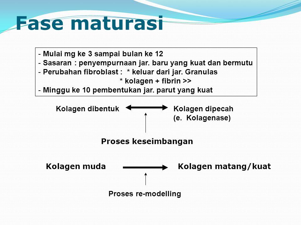 Fase maturasi - Mulai mg ke 3 sampai bulan ke 12 - Sasaran : penyempurnaan jar.