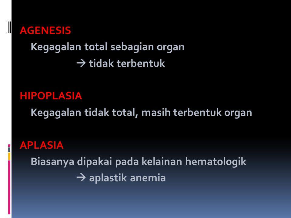 AGENESIS Kegagalan total sebagian organ  tidak terbentuk HIPOPLASIA Kegagalan tidak total, masih terbentuk organ APLASIA Biasanya dipakai pada kelainan hematologik  aplastik anemia
