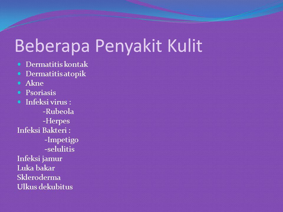 Beberapa Penyakit Kulit Dermatitis kontak Dermatitis atopik Akne Psoriasis Infeksi virus : -Rubeola -Herpes Infeksi Bakteri : -Impetigo -selulitis Inf