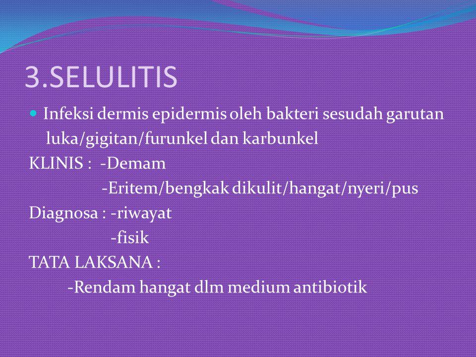 3.SELULITIS Infeksi dermis epidermis oleh bakteri sesudah garutan luka/gigitan/furunkel dan karbunkel KLINIS : -Demam -Eritem/bengkak dikulit/hangat/n