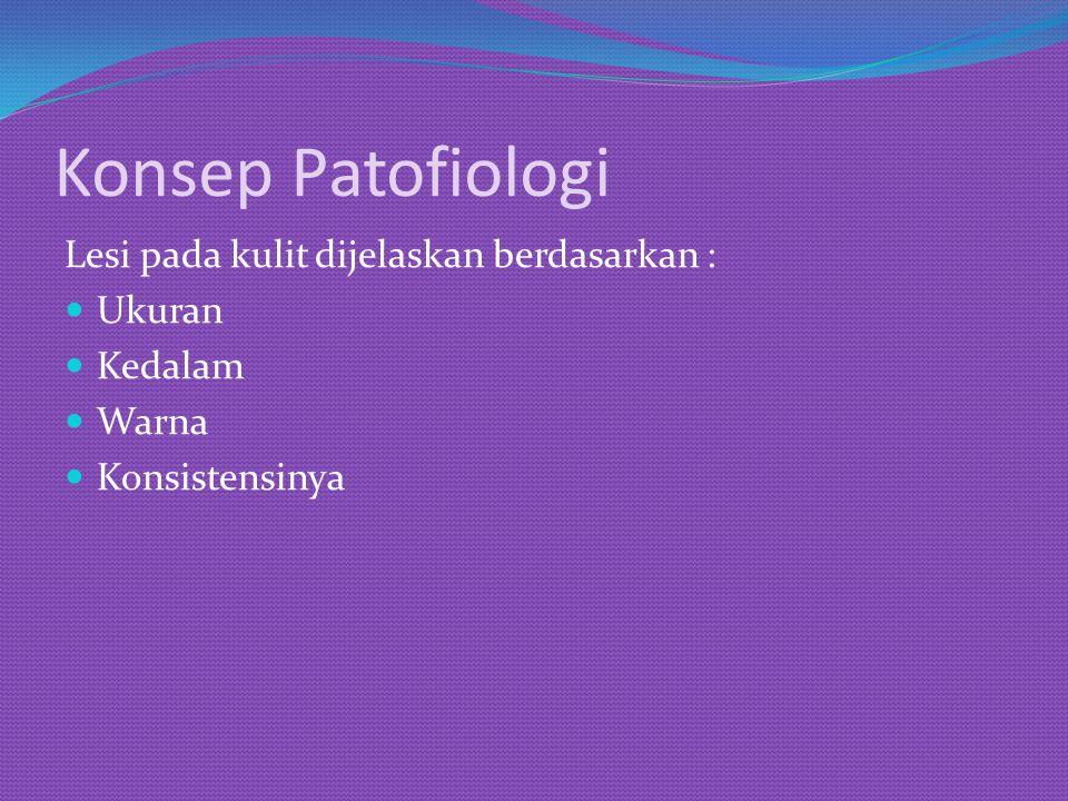Konsep Patofiologi Lesi pada kulit dijelaskan berdasarkan : Ukuran Kedalam Warna Konsistensinya