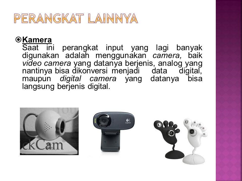  Kamera Saat ini perangkat input yang lagi banyak digunakan adalah menggunakan camera, baik video camera yang datanya berjenis, analog yang nantinya