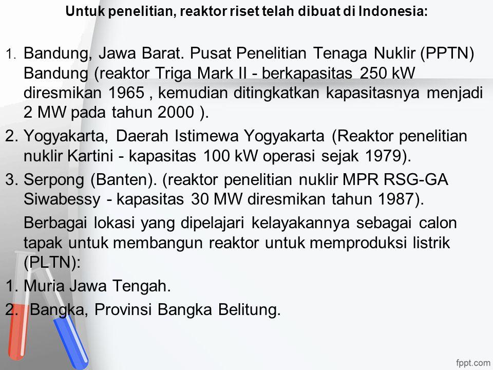 Untuk penelitian, reaktor riset telah dibuat di Indonesia: 1. Bandung, Jawa Barat. Pusat Penelitian Tenaga Nuklir (PPTN) Bandung (reaktor Triga Mark I