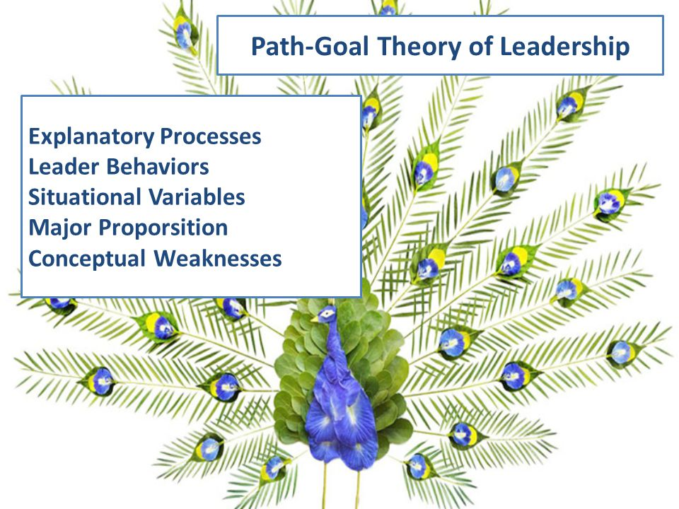 Path-Goal Theory of Leadership Explanatory Processes Leader Behaviors Situational Variables Major Proporsition Conceptual Weaknesses