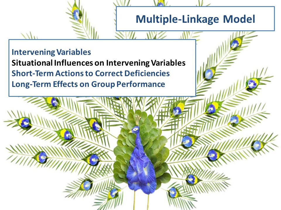 Multiple-Linkage Model Intervening Variables Situational Influences on Intervening Variables Short-Term Actions to Correct Deficiencies Long-Term Effects on Group Performance