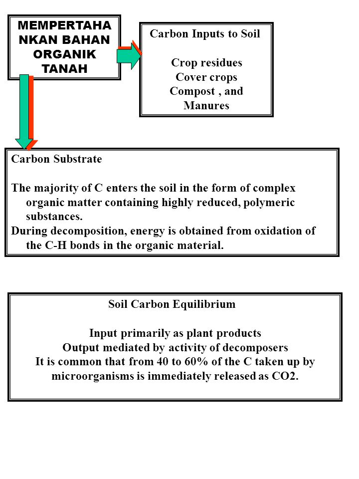 MEMPERTAHA NKAN BAHAN ORGANIK TANAH Carbon Inputs to Soil Crop residues Cover crops Compost, and Manures Carbon Substrate The majority of C enters the