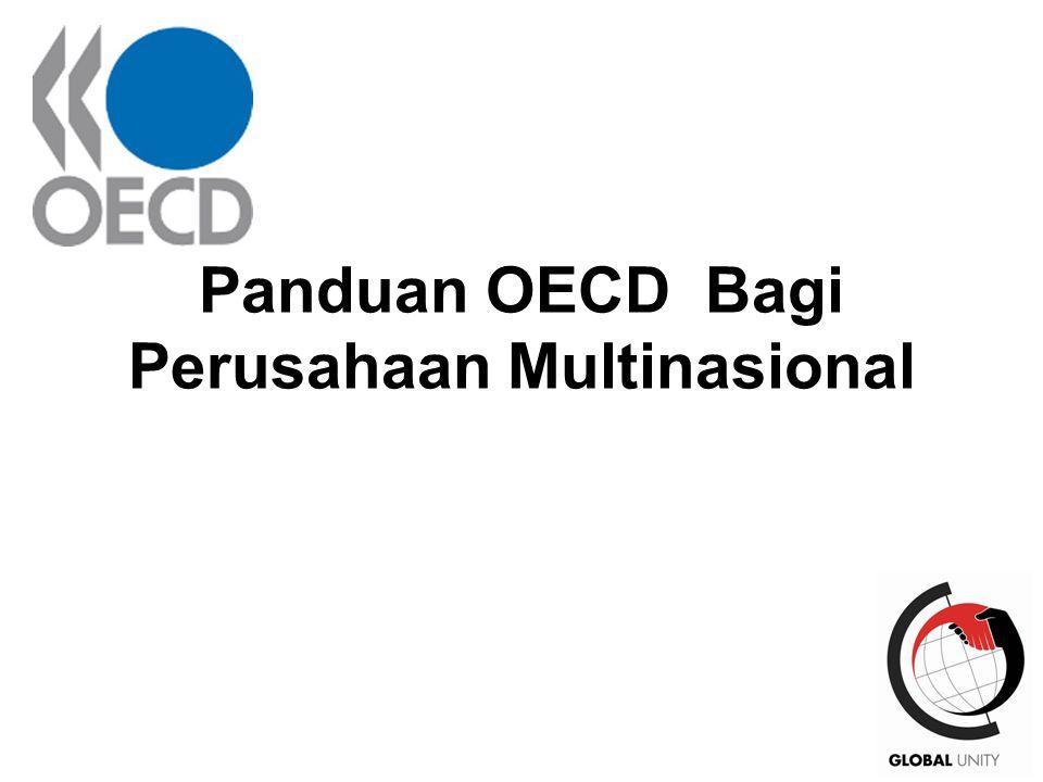 23 Panduan OECD Bagi Perusahaan Multinasional