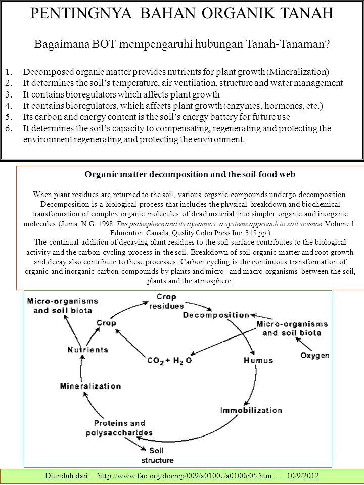 PENTINGNYA BAHAN ORGANIK TANAH Bagaimana BOT mempengaruhi hubungan Tanah-Tanaman? 1.Decomposed organic matter provides nutrients for plant growth (Min