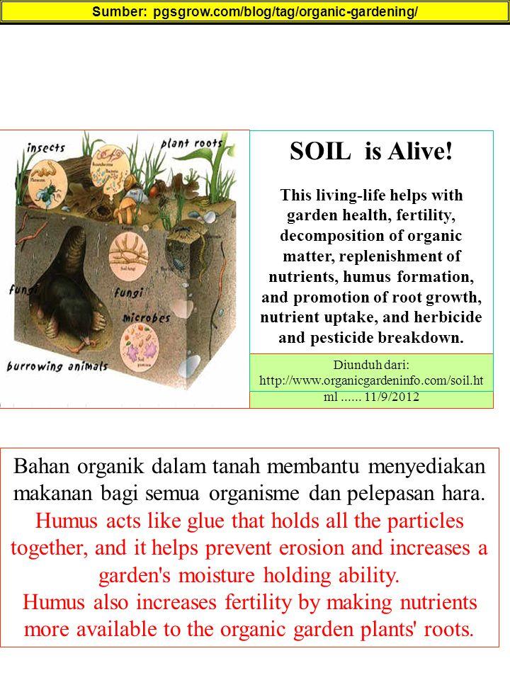 Sumber: pgsgrow.com/blog/tag/organic-gardening/ Bahan organik dalam tanah membantu menyediakan makanan bagi semua organisme dan pelepasan hara. Humus