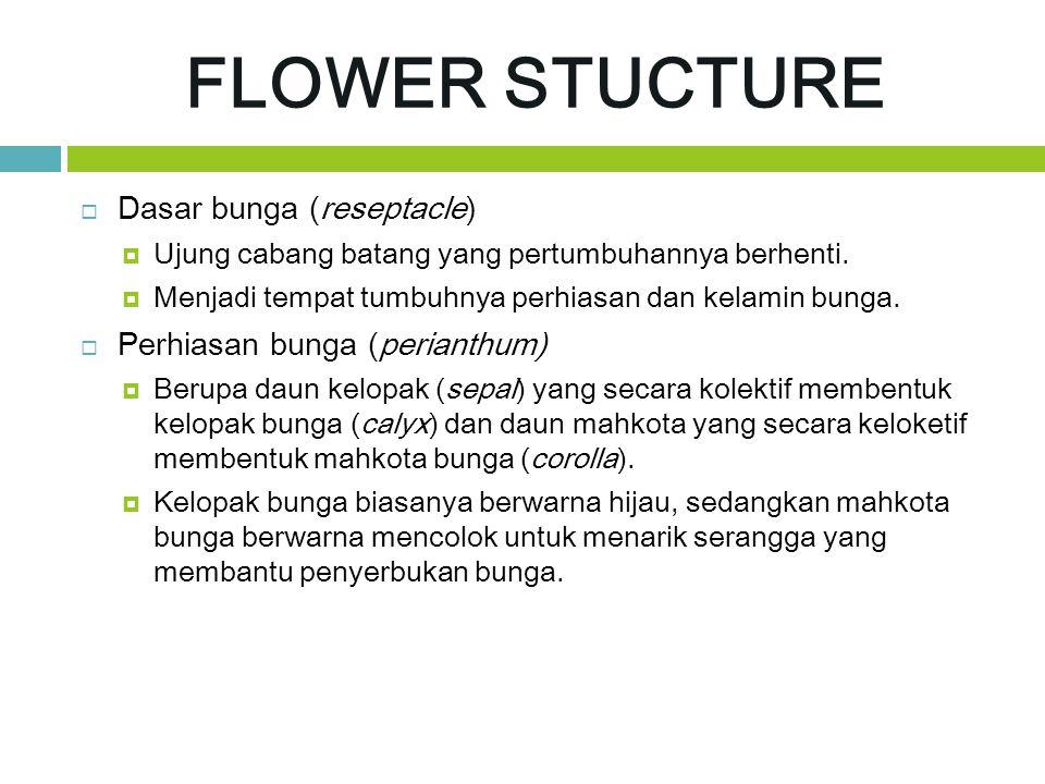 FLOWER STUCTURE  Dasar bunga (reseptacle)  Ujung cabang batang yang pertumbuhannya berhenti.  Menjadi tempat tumbuhnya perhiasan dan kelamin bunga.