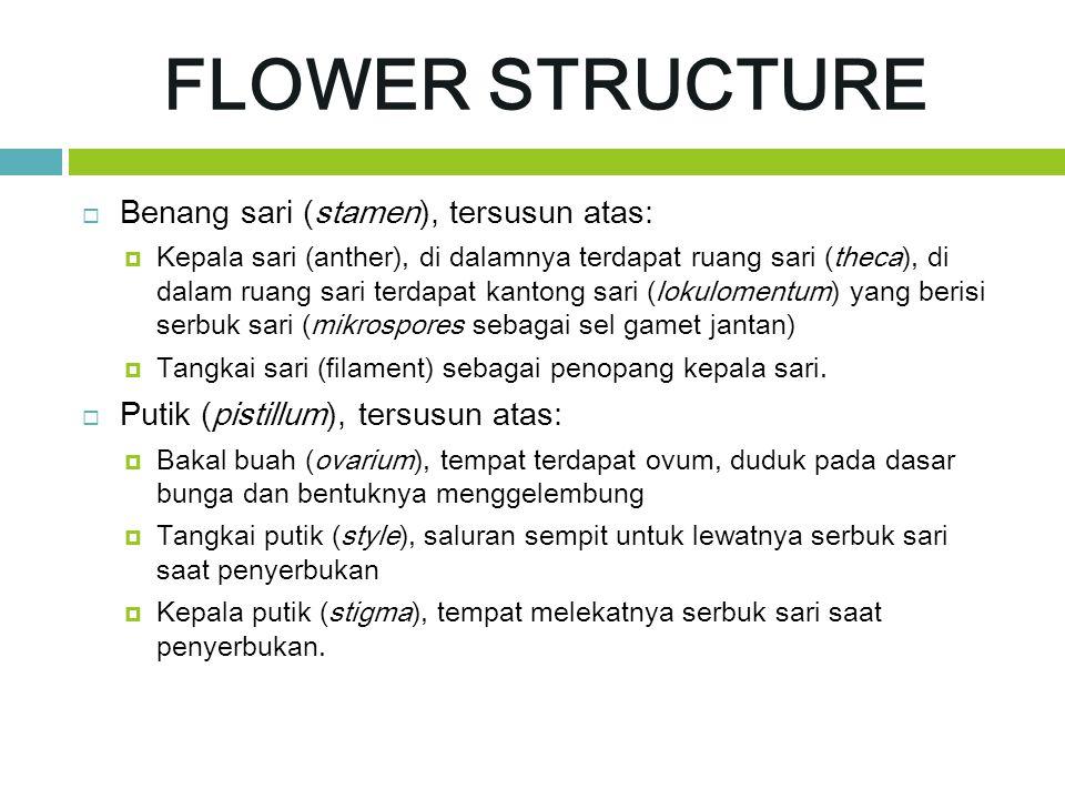 FLOWER STRUCTURE  Benang sari (stamen), tersusun atas:  Kepala sari (anther), di dalamnya terdapat ruang sari (theca), di dalam ruang sari terdapat