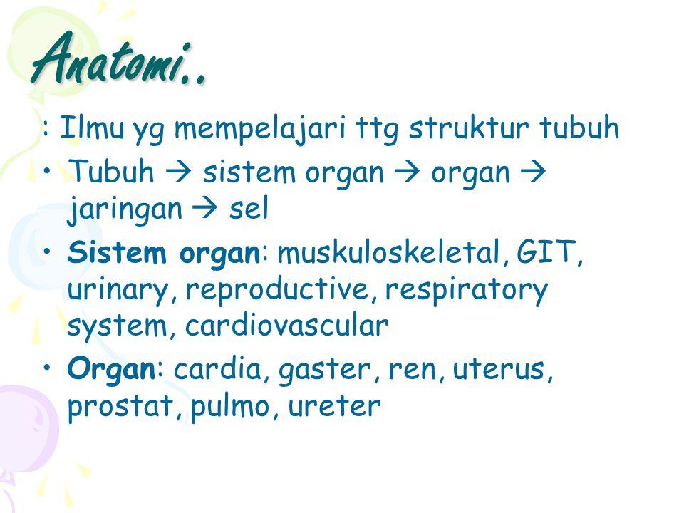 Anatomi.. : Ilmu yg mempelajari ttg struktur tubuh Tubuh  sistem organ  organ  jaringan  sel Sistem organ: muskuloskeletal, GIT, urinary, reproduc